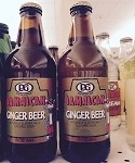 Jamaican Ginger Beer (12 fl oz)